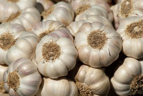 Some Amazing Benefits of Garlic