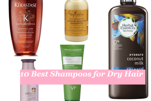 10 Best Shampoos for Dry Hair